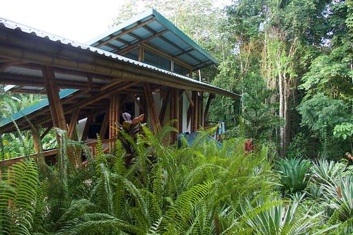 costa-rica-osa-thomas-trip4