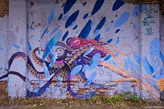 IMGP6813 Octopus on a wall (Claudio e Lucia Images around the world) Tags: milano tag murales graffiti paintedwalls colors art streetart navigli naviglio oldmilano vecchiamilano artist pentax pentaxk3ii sigma sigma1020 wall octopus