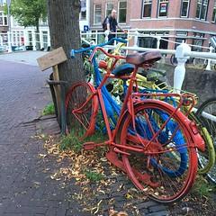 weekendje Delft - Augustus 2017 (Kristel Van Loock) Tags: bici bicycle fiets fietsen vélo biciclette bicicletta bike bicycles delft uitindelft visitdelft ilovedelft staddelft delftcity zuidholland holland nederland visitthenetherlands august2017 augustus2017 niederlande hollande olanda lespaysbas paysbas paesibassi paísesbaixos lospaísesbajos europe europa weekendjedelft weekendjenederland citytrip fahrrad bicicleta