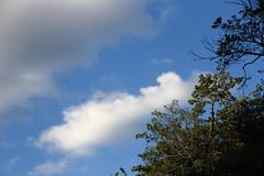 20171008_IMG_3554 (NAMARA EXPRESS) Tags: street sky cloud tree castle ariokacastle daytime fine outdoor color itami hyogo japan canon eos 7d efs 1585mm f3556 is usm namaraexp