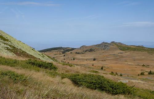 Mount Vitosha (3)