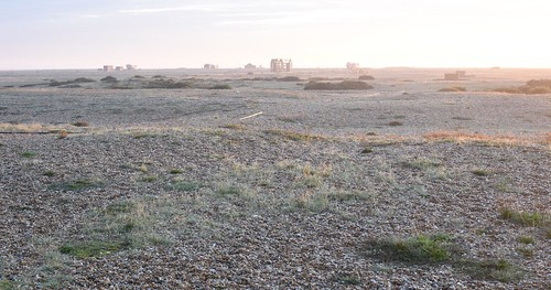 Dungeness misty sunrise