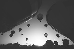 Balloons In The Sky (Marcela McGreal) Tags: newyork ny glensfalls adirondackballoonfestival ballons hotairballon adirondacks sky sunrise festival raw blackandwhite blackwhite bw blancoynegro blanconegro bn byn blanco negro black white noiretblanc noirblanc noir blanc biancoenero bianco nero bianconero pretobranco pretoebranco preto branco schwarzundweis schwarz weis nikond3300 nikon