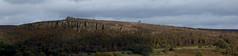 20171012 Wlk frm Grindleford_0095 Millstone Edge~Mother Cap~Over Owler Tor (paul_slp5252) Tags: derbyshire millstoneedge mothercap overowlertor