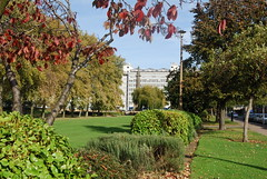 Queens gardens (Halliwell_Michael ## sorry very slow at the moment) Tags: hull eastyorkshire nikond40x 2017 autumn trees autumncolour parks landscapes city cities gardens buildings cityscapes