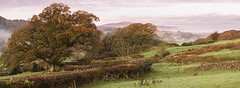 18th October 2017 (Rob Sutherland) Tags: lowick sparkbridge ulverston cumbria lakedistrict cumbrian autumn autumnal colour color colours colors trees foliage morning light early dawn uk england english britain british field fields hedge hedges wall walls lane road