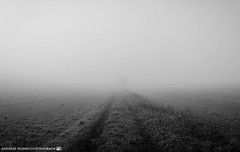 The path to nowhere. (andreasheinrich) Tags: landscape path fields fog morning autumn october blackandwhite blackandwhitephotos misty cold germany badenwürttemberg neckarsulm dahenfeld deutschland landschaft weg felder nebel morgen herbst oktober schwarzweis neblig kalt nikond7000