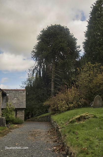 Llangunllo Powys