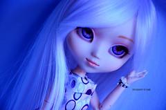 Blue Sense | Pullip My Melody (·Kumo~Milk·^^) Tags: pullip mymelody hikari doll junplanning groove rewigged wig rechipped eyechips acrylics acrylicseyes eyelashes gloss obitsu