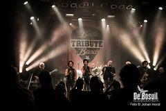 2017_10_28 Bosuil Battle of the tributebandsJOE_6859-Johan Horst-WEB