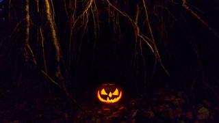 Halloween Horror Pumpkin In The Woods