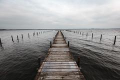 horizon (hansekiki ) Tags: niedersachsen steinhudermeer landschaften canon 5dmarkiii