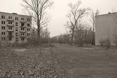_MG_8415 (daniel.p.dezso) Tags: kiskunlacháza kiskunlacházi elhagyatott orosz szoviet laktanya abandoned russian soviet barrack urbex ruin military base militarybase