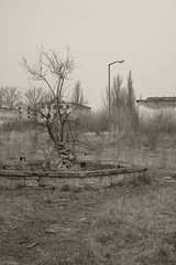 _MG_8440 (daniel.p.dezso) Tags: kiskunlacháza kiskunlacházi elhagyatott orosz szoviet laktanya abandoned russian soviet barrack urbex ruin fountain military base militarybase
