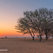 Sunset in Solitaire, Namibia
