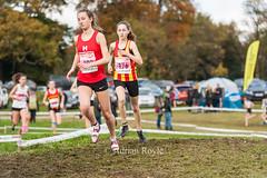 DSC_9481 (Adrian Royle) Tags: mansfield berryhillpark sport athletics running racing relays xc crosscountry ecca nationalcrosscountryrelays athletes runners action clubs park autumn nikon