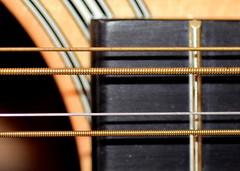 Macro Mondays - Martin D12-28 String Detail (zendt66) Tags: zendt66 zendt nikon d7200 nikkor 60mm macromondays memberschoicemusicalinstruments detail 12 string twelve guitar martin fret fotodiox