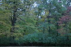 IMG_5435 (davekremitzki) Tags: new salem state park illinois