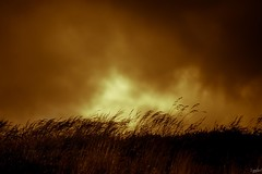 (iggyshoot) Tags: ciel sky cielo amazing nature landscape mountain mountains montagne herbe alpes alps frenchalps savoie arc1950 paysage orange blanckandorange silhouette clouds nuage stormy nikon d610 reflex
