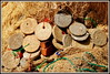 DSC_0226 (scoubidou13) Tags: filets flotteurs lanka sri