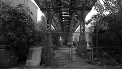 Underneath the Douglas L Line in Pilsen - Chicago - 15 Oct 2017 - 5DS - 030-FLKR222 (Andre's Street Photography) Tags: chicago chitown chicagoil secondcity windycity pilsen southwestside westside eltracks chicagoel traintracks pylons pillars steel fence decay rust cta masstransit alley backalley urbanlandscape cityscape alleyscape urbanphotography urbandecay urbanneglect urban commuterline douglasel douglasl douglaseltracks bw bwphotography bwphoto blackandwhite noiretblanc blancoynegro blancoenero bn zwartwit schwarzweiss chicagotribune chicagoreader chicagomagazine chicagoist chicagocapture chicagostreets chicagoalleys canon eos eos5ds sigma sigmaart sigma20mmart artlens photobyandrevanvegten look lifemagazine aroundillinois landoflincoln city stad urbana metro metropolis