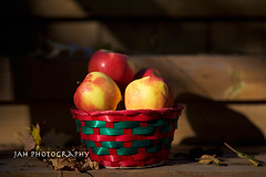 ...By Step (jah32) Tags: apples apple basket fall fallcolours fallcolors fallcolor fallcolour light lightroom shadow shadows red onthedeck autumn outdoors fruit
