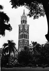 India= Bombay University (rossendale2016) Tags: university bombay india