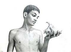 Pencil drawing: *Young Man Looking at a Seashell* (Dennis Candy) Tags: drawing youngman seashell pencil art creativity graphite