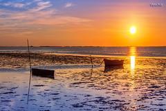 20171028_MG_8606-Un paseo por la playa. (vipuchol) Tags: playa deltadelebro barcas sol nubes amanecer mar