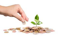 finance new business - start-up - Money and plant  with hand (Onlyimages01) Tags: money plant growth finance business coins grow leaf savings cash currency investment hand new sow bank banking care concept earnings economic euro gold green heap idea interest invest isolated loan many pile success tree wealth white background capital coin holding income life metaphor profit value seed italy