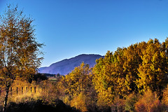 November sun (Fr Paul Hackett) Tags: trees mountain autumn sky blue sunshine