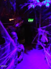 100717-027 (leafworks) Tags: chroniclesofsirthomasleaf colorado adventuresofprincecian denver halloween casabonita restaurants funcenters coloradosprings co usa 01