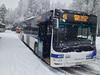 Autobus MAN Lion's City 417 en service sur la ligne 46.  © Marc Germann