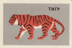 russian matchbox label (maraid) Tags: russian russia matchbox labels animal ussr 1960s 1965 tiger leningradzoo