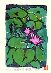 Sacred lotus (Japanese Flower and Bird Art) Tags: flower sacred lotus nelumbo nucifera nelumbonaceae chieko ishida modern woodblock print japan japanese art readercollection