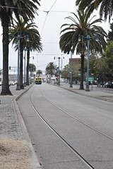 Palm Tree Tree Transportation Day The Way Forward Outdoors Railroad Track Built Structure Architecture Building Exterior No People Sky Nature Tram Trolley San Francisco SF Natgeo Fstoppers Concrete Jungle Bay Area (tooloud07) Tags: palmtree tree transportation day thewayforward outdoors railroadtrack builtstructure architecture buildingexterior nopeople sky nature tram trolley sanfrancisco sf natgeo fstoppers concretejungle bayarea