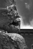 Golem (sharkoman) Tags: golem scultura antropomorfismo pareidolia volto faccia creatura mostro monster ursfischer spalla shoulder firenze piazzasignoria bigclay naso nose sculpture facesinplaces