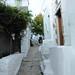 Ile de Skyros  Grèce.