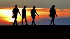 contre-jour, digue de porsguen (eric-foto) Tags: digue porsguen plouescat sunset bretagne breizh brittany bzh pennarbed nikond800 contrejour backlight côtedessables finistère