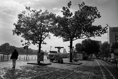 Sonniger Herbsttag am Main-bw_20170928_4668.jpg (Barbara Walzer) Tags: 280917 mainufer main stadtbildfrankfurt