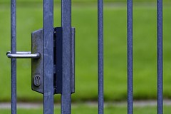 Thank God It's Friday (Alfred Grupstra) Tags: steel metal fence ironmetal outdoors gate grass closeup backgrounds security greencolor nopeople lock sport