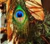 🎼You're an Eye-catcher🎶#eyecatcher #eye #peacockfeather #feather #feathers #detail #details #lovedetail #interior #design #interieur #lovephotography #photographer #photography #fotograaf #fotografie #inside (Chantal vander Reijden) Tags: fotografie peacockfeather lovephotography photography lovedetail inside details detail feather interieur photographer interior fotograaf feathers eye eyecatcher design