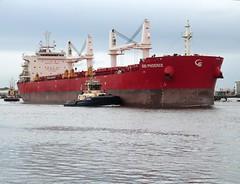 SBI Phoenix.. Tyne 111017 (silvermop) Tags: shipboats ships sea vessels bulkcarriers bulkers port tyne sbiphoenix