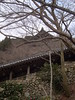 Hase-dera (toshto) Tags: 長谷寺 奈良 寺院 仏教 真言宗 国宝 花の御寺 hasedera nara japan temple buddhism shingonshu nationaltreasure flowertemple