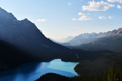 Peyto Lake (F VDS) Tags: peyto lake mountains evening icefields parkway alberta banff national park rockies summer nikon d500 nikkor 1755mm28 yodashaped 2017 canada landscape contrast glacier glacierfed bow summit turquoise famous forest valley bucketlist f110 iconic