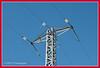 La red (T.I.G. Foto Digital) Tags: españa laredelectrica cielo azul nikon d3000 electricidad colores torres cables tension