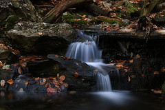 Autumn Falls (EyeoftheImage) Tags: amazing autumn autumncolors beautiful bestshotoftheday breathtaking capturing capture country discovery depthoffield dof exploring earth exquisite explore exposure forests forest fall falls fallfoliage fallcolors globe greatphotographers greatnature landscape landscapes light longexposure longexposures longexposurewater majestic newengland ngc nature picturesque water weather waterfall