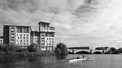 4x 16-09-17  (20 bw) (Big Warby) Tags: davidwarburton bigwarby northyorkshire stocktonontees rivertees river rowing sculling quad 4x boat scull blades women exercise