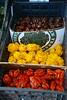 hotness levels (danbruell) Tags: meridianfarmersmarket okemos hot spicy ghostpepper habanero scoville vegetable