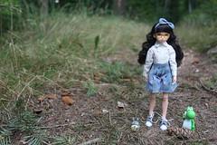 De paseo con amigos. (Ninotpetrificat) Tags: ruruko ramoneras petworks puppe muñeca doll japandoll japantoy toys asiantoy hobby cute kawaii yoshi totoro wald wanderung bosque